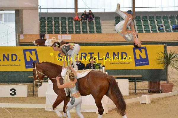 Obersiebenbrunn (AUT); Pferd: Leokado; Longe: Cornelia Trimmel