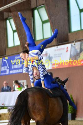 JT VFZ Mainz-Ebersheim; LV: Rheinland-Pfalz; Pferd: Celebration; Longe: Alexandra Dietrich