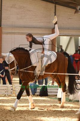HWR I; Pferd: Cajus; Longe: Justina Hildebrandt