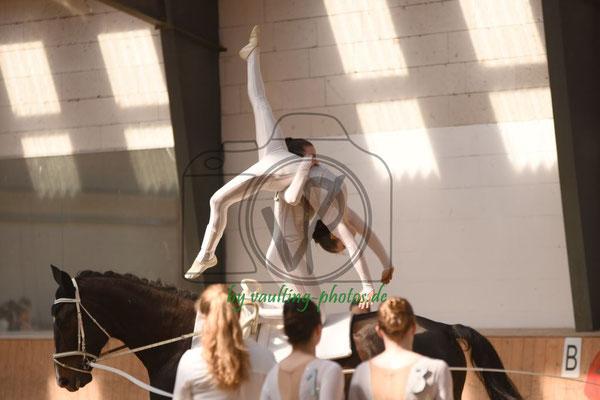 Schäferhof I; Pferd: Court Boy; Longe: Lisa Schwarz