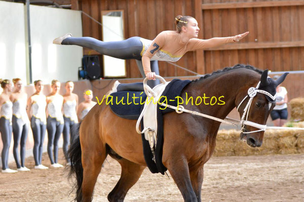 Bad Ems II; LV: Rheinland-Pfalz; Pferd: Maximus; Longe: Jessica Schumacher