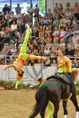 RV Nordheim I; LV: Baden-Württemberg; Pferd: Hamphrey Bogard 6; Longe: Andrea Blatz