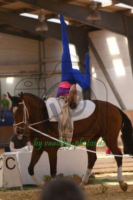 Cremlingen I; Pferd: Golden Sun; Longe: Gabriele Bertram