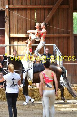 Schriesheim II; LV: Baden Württemberg; Pferd: Kola; Longe: Ina Baier