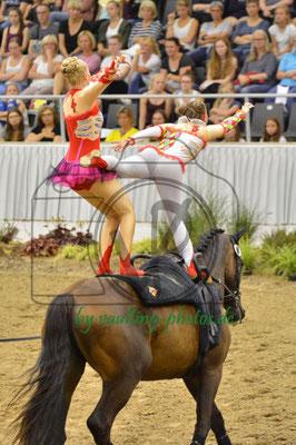 VFZ Mainz-Ebersheim I; LV: Rheinland-Pfalz; Pferd: Celebration; Longe: Alexandra Dietrich