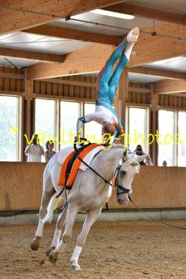 RFV Moritzburg I; Longe: Andreas Bäßler; Pferd: MOL Mockup