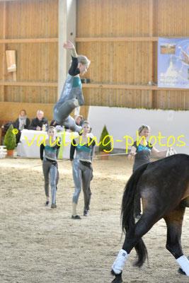 RFV Oberhavel Birkenhof; Pferd: Herr Bolle; Longe: Martina Mielke