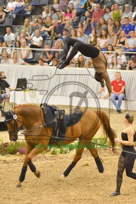 Fredenbeck I; LV: Hannover; Pferd: Wizaro; Longe: Gesa Bührig