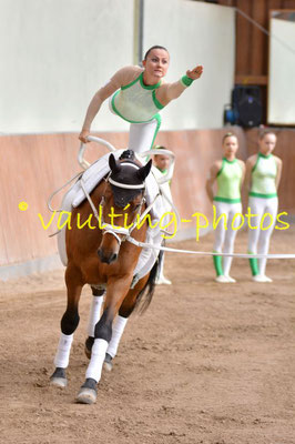 PSF Munderkingen; LV: Baden-Württemberg; Pferd: Halardo; Longe: Silke Stöhr