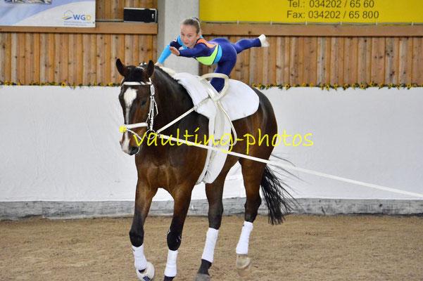 Cremlingen III; Pferd: Quentino; Longe: Ellen Dierkes