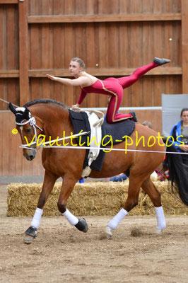 Taunusstein III; LV: Hessen; Pferd: Lascar; Longe: Bettina Strupp