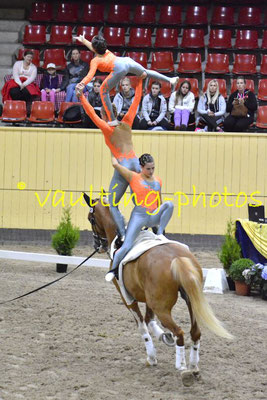 National Team Netherlands (NED); Pferd: Warnix; Longe: Daisy de Groot