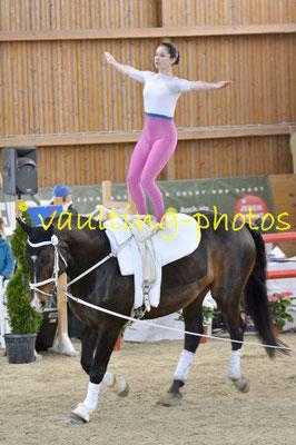Schäferhof; Pferd: Court Boy; Longe: Lisa Schwarz