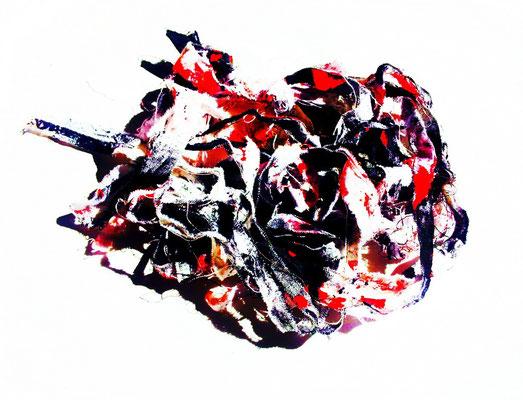 "Seeing Red. 2012.Photography. 36""x48"".Copyright (c) 2012 Sandra Perez-Ramos."