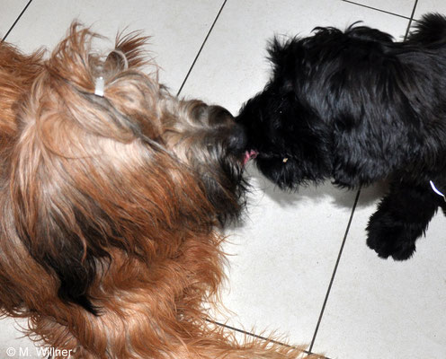 Küsschen Mama & Tochter
