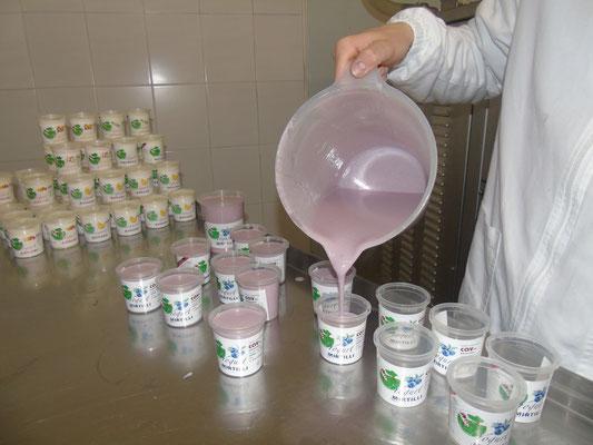 produzione yogurt