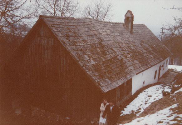 Frontansicht mit altem Stadl ca. 1980