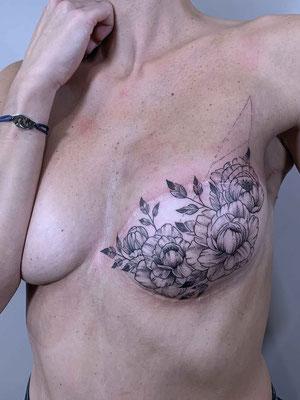 Pictampellis . Anne France