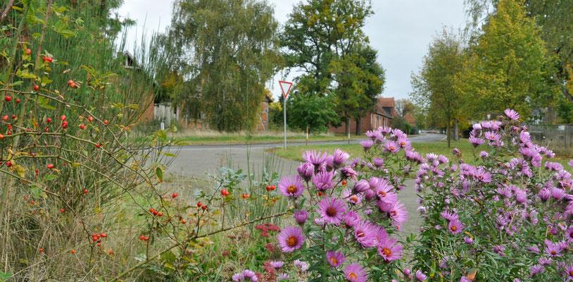 Herbststillleben in Schmölau