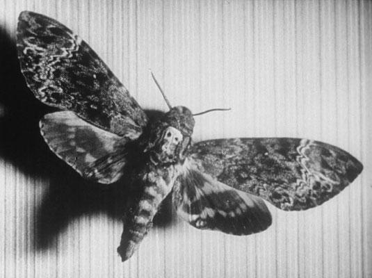 1929_ChienAndalou