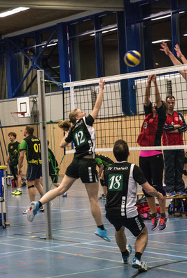 Volleyball Turnier Thalwil