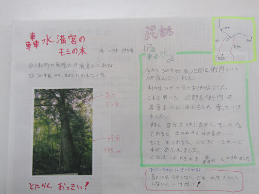 轟水満宮のモミの木