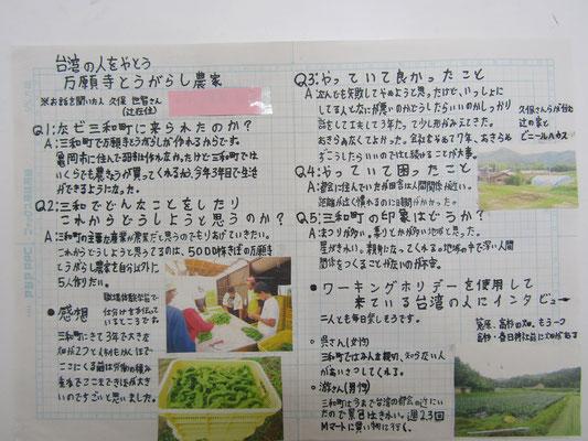 台湾の人をやとう万願寺とうがらし農家