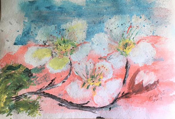 Aprikosenblüten, Acryl auf Papier 35 x 25 cm (verkauft)