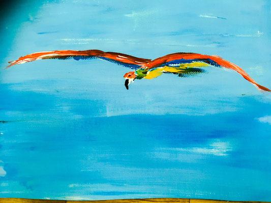 Papagei in der Luft Acryl auf Papier Format A4