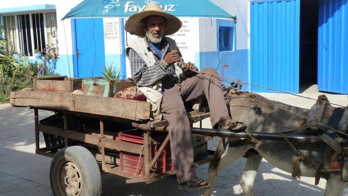 Der Bauer kam mit seinen Eselkarren auf den Campingplatz und verkaufte Tomaten und Trauben