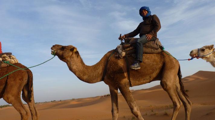 """Laut Gaby """"Ein Kamel auf dem anderen"""""""