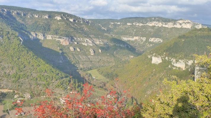 Typische Landschaft in den Cevennen, Nähe Gorges du Tarn