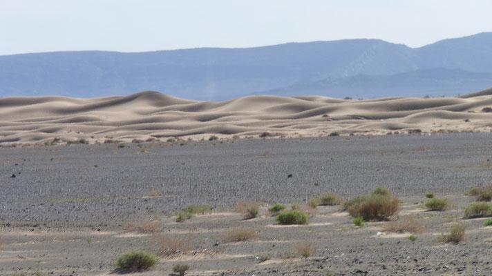 Die Wüstenlandschaft kommt immer näher