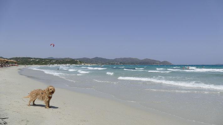 An der Spiaggia Giunco