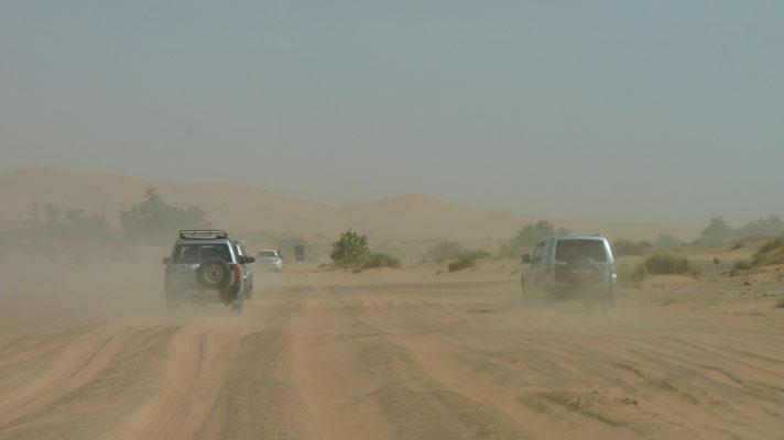 Jeder Gleändewagen sucht sich seinen eigenen Weg durch die Wüste