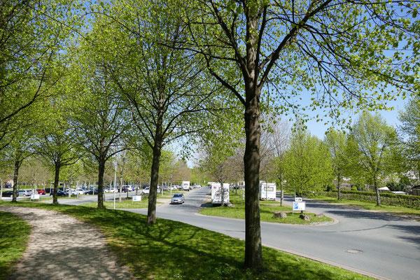 Parkplatz Eiswiese