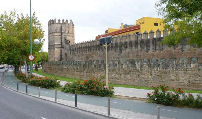 Die alte Stadtmauer von Sevilla