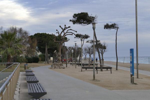 Die schön angelegte Promenade von Pineda de Mar