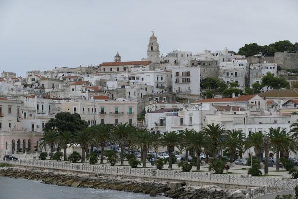 Die Altstadt auf dem Felsen