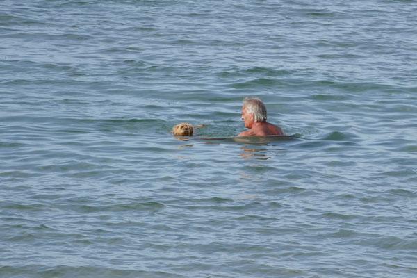 Cheevi beginnt zu schwimmen