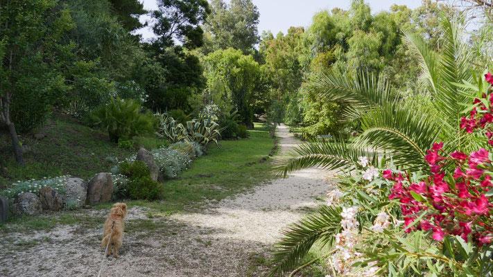 Teil von Osalla Beach Garden