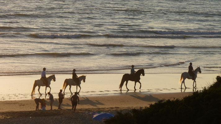 Abends kommen die Reiter an den Strand
