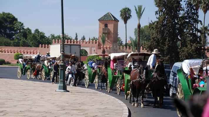 Unsere Kutschen-Karawane auf Besichtigungstour durch Marrakech