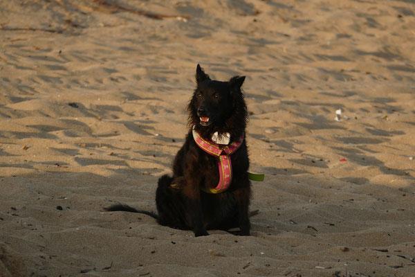 Negr allein am Strand