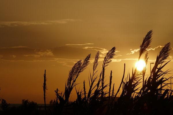 Sonnenuntergang in Acquadolce Cirenaica