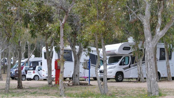 Wir sind da, unser erster Campingplatz auf Sardinien, Camping Isuledda in Cannigione