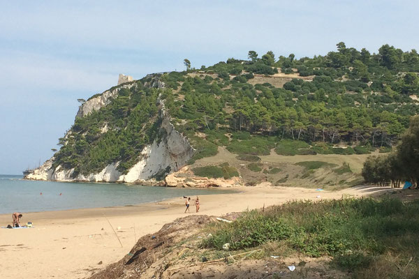 Strand an der Baia Calenella