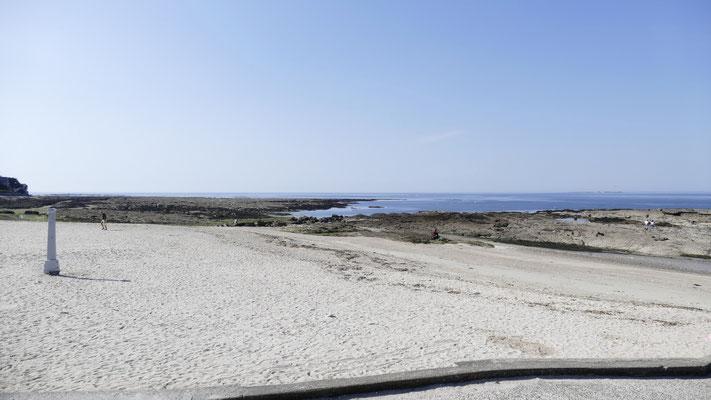 Austernsucher am Strand von Periac-sur-Mer