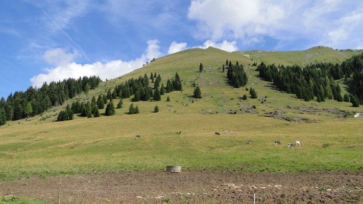 Am Passo Brocon zwischen Pieve Tesimo und San Martino di Castrozza