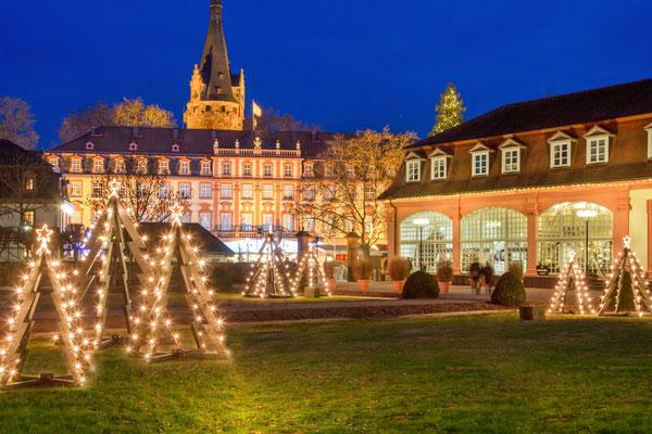 Schloßweihnacht Erbach